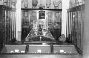 Imagen de la situación de los objetos y de las colecciones.
